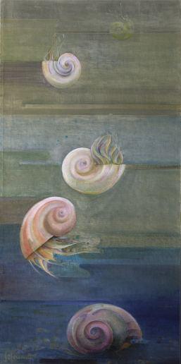122 Nautilus lowres preview
