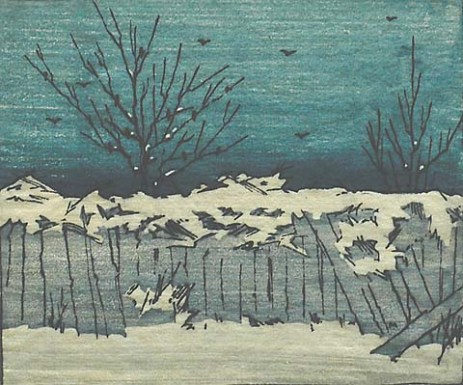 Colwell | Fence in Winter