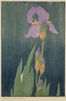 Hopkins   Iris