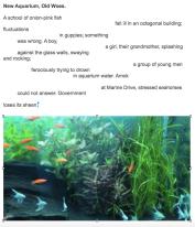 New Aquarium, Old Woes   Alex Josephy