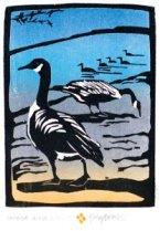 Bowen | Canada Geese
