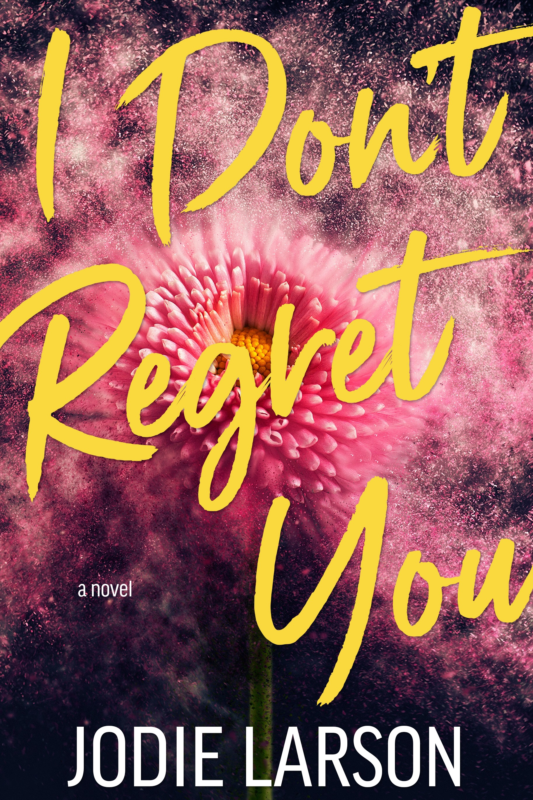 I DON'T REGRET YOU by Jodie Larson