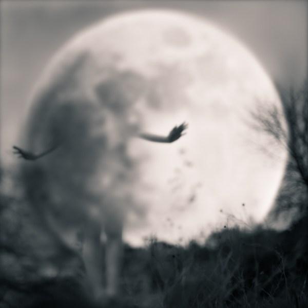 Girl In Moon Tami Bone Susan Spiritus