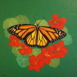 Monarch Butterfly by Susan Sternau