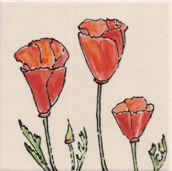 Three California Poppies, single product, by Susan Sternau