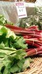 Beautiful bunches of rhubarb sold by Windellama Organics