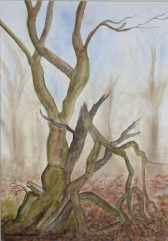 Tree Study, Magpie