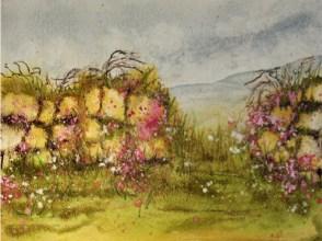 Cornish Hedge II