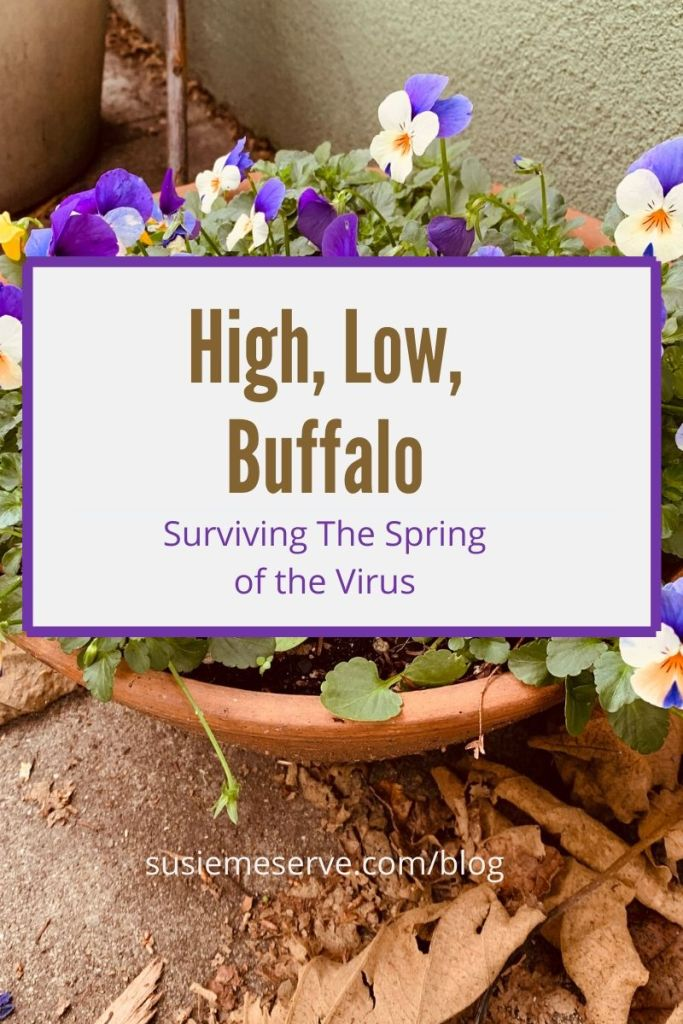High, Low, Buffalo is a dinnertime game where you share the best, the worst, and the magical parts of your day. Here's my High, Low, Buffalo for the Spring of the Virus