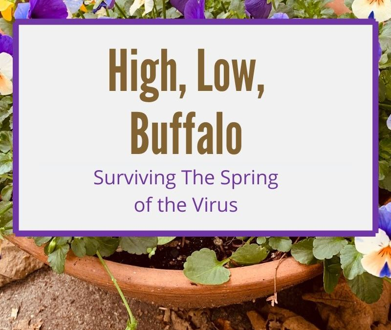 High, Low, Buffalo: Surviving The Spring of the Virus