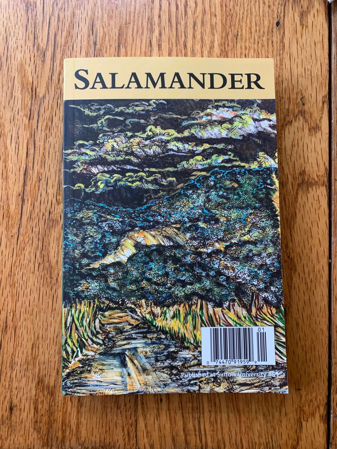 Susie Meserve poem in Salamander literary journal