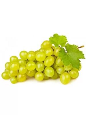 Концентрат білого виноградного соку