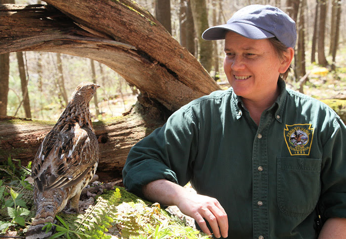 PA Game Commission Biologist to Discuss Plight of Ruffed Grouse at