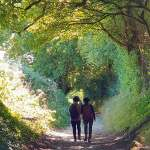 Join me on a guided walk in West Sussex and the South Downs