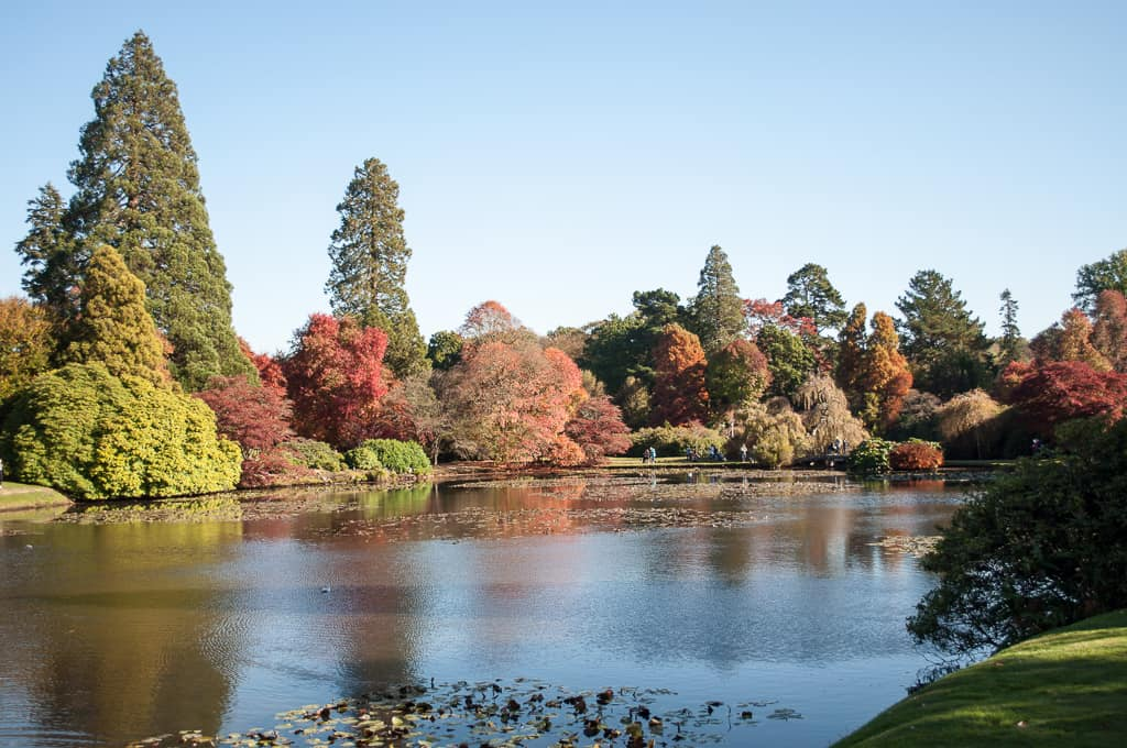 Sheffield Park Gardens, near Uckfield
