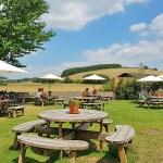 The best beer gardens in West Sussex