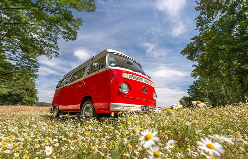 Sussex campervans