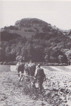 Ploughing under Chanctonbury, at Washington. 1934 Garland photo, p.71 Across Sussex with Belloc, by Bob Copper