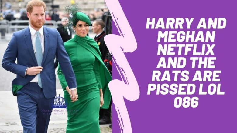 Harry and Meghan Netflix and the rats are pissed LOL