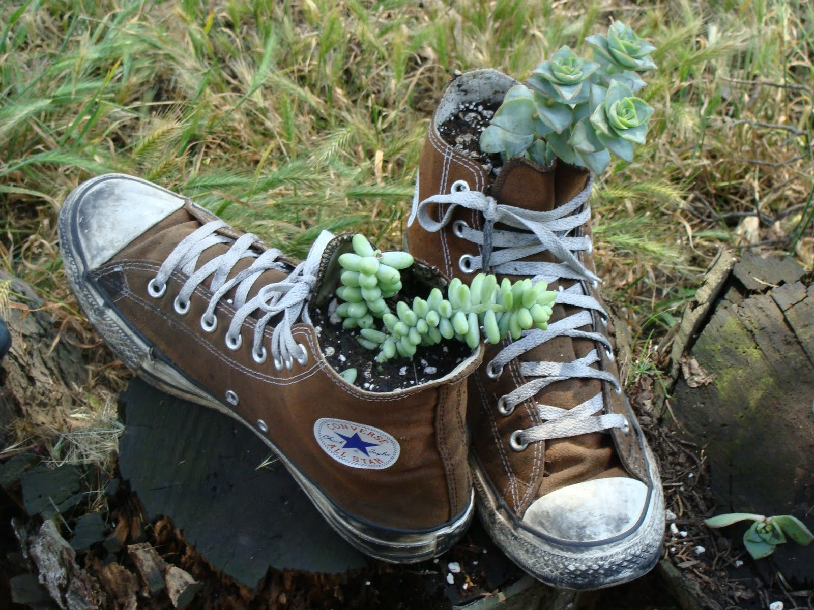 Reusing Old Shoes  sustainablespu