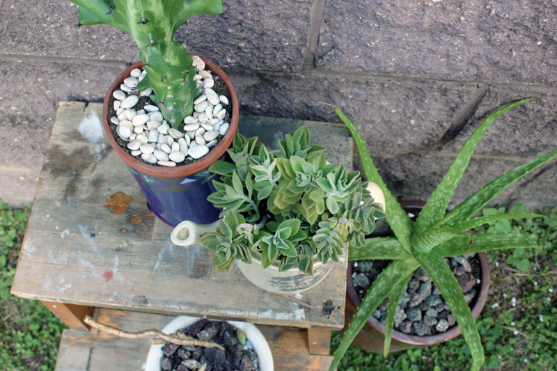 UPCYCLED_POTS_1