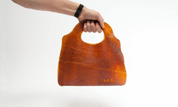 The Fruit Leather Bag