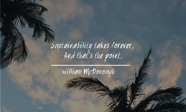 A Sustainable Wrap Up!