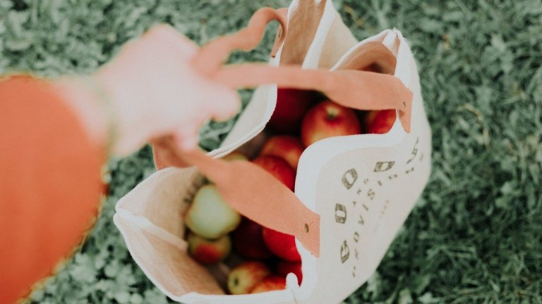 Which Type of Reusable Grocery Bags Are the Most Environmentally Friendly?