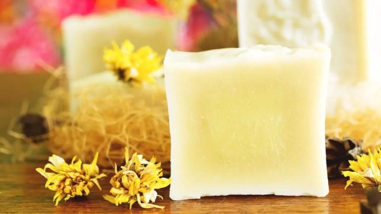 Is Castile Soap Biodegradable?