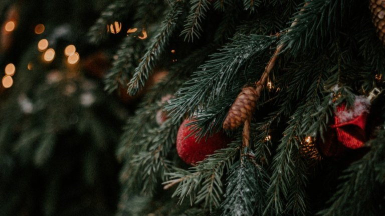Are Real Christmas Trees Recyclable?