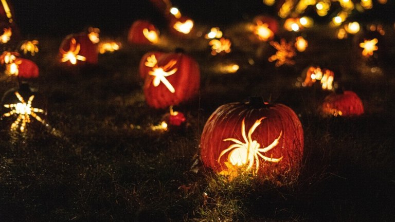 How to Make Halloween More Sustainable