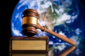 Environmental Law India 1