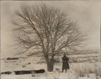 Antique photo of large wild apple tree in wintertime with main in long coat and hat