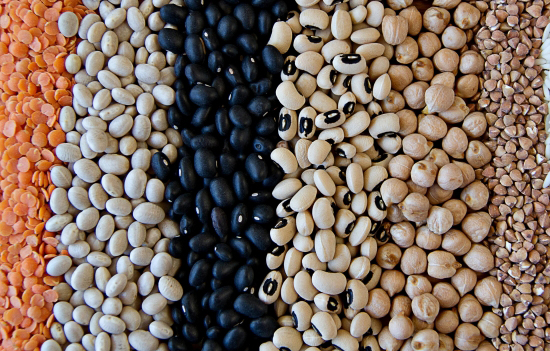 A variety of dry beans lined up by color: red lentils, cream colored and navy beans, cowpeas