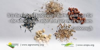Seed bank BiodiversityRangeQuote4 x400