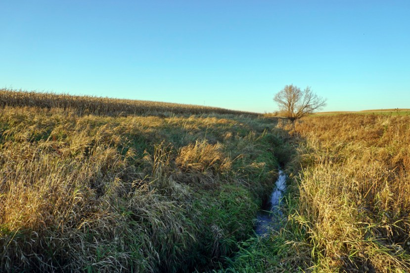 stream between two piece of land