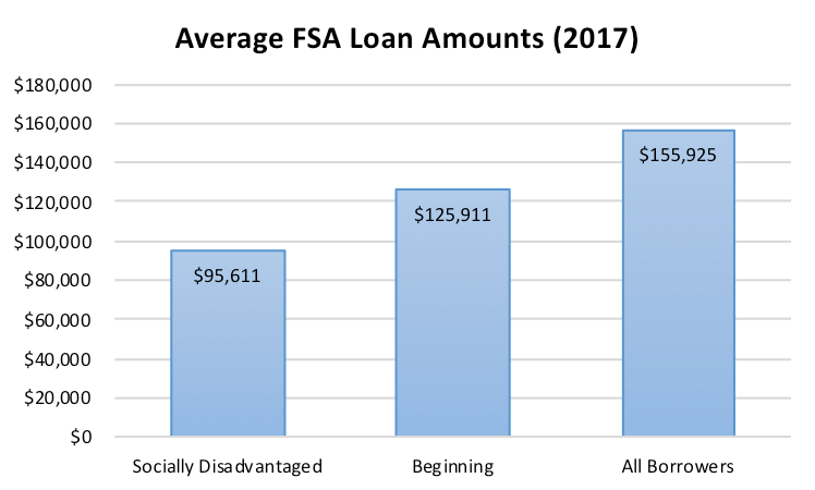 Average FSA Loan Amounts (FY 2017)