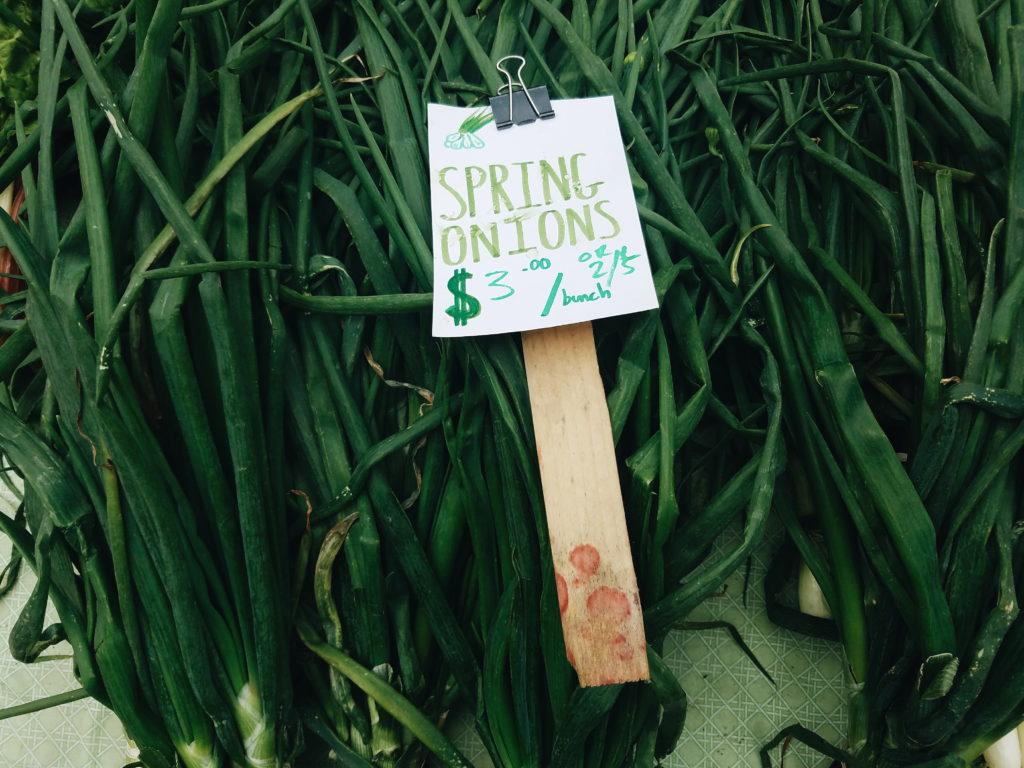 Spring onions at the farmers market. Photo credit: Reana Kovalcik