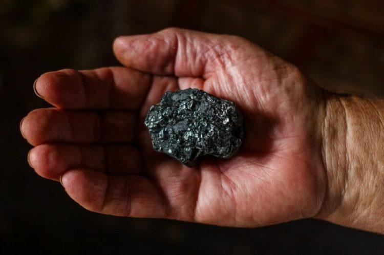 Dari Ekspor Batu Bara Hingga Bijih Besi