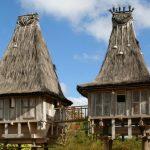 Potensi Komoditas Ekspor Timor Leste