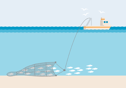 Bottom trawl-500