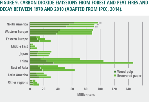 small resolution of carbon dioxide emissions from forest and peat fires and decay between 1970 and