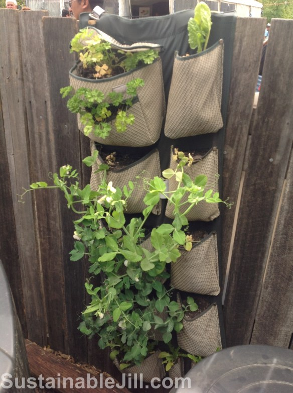 Over door hanger pockets as vertical garden