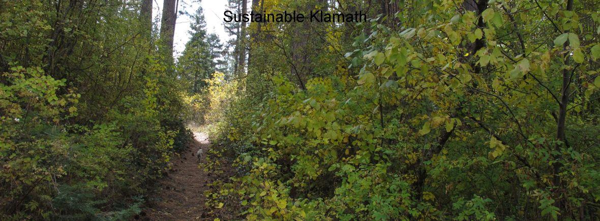 Sustainable Klamath