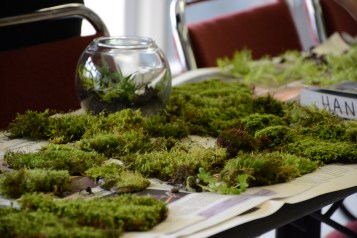 A sampling of mosses used during the workshop. (Image courtesy of Mitch Prentice)