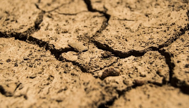 Rebuild soil