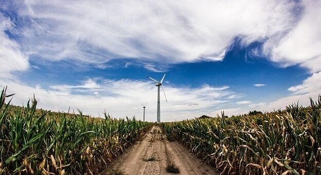 Carbon footprint quiz