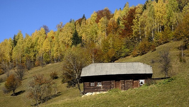How to prepare your homestead for winter