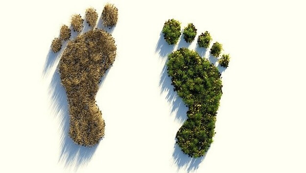 Environmental footprint calculator