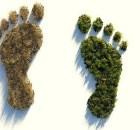 Environmental footprint calculator